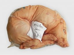 Suckling pig 12.6-13.0 lb